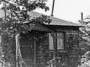 "Cottage at 1624 Milvia Street, Allen's ""Strange New Cottage in Berkeley"""